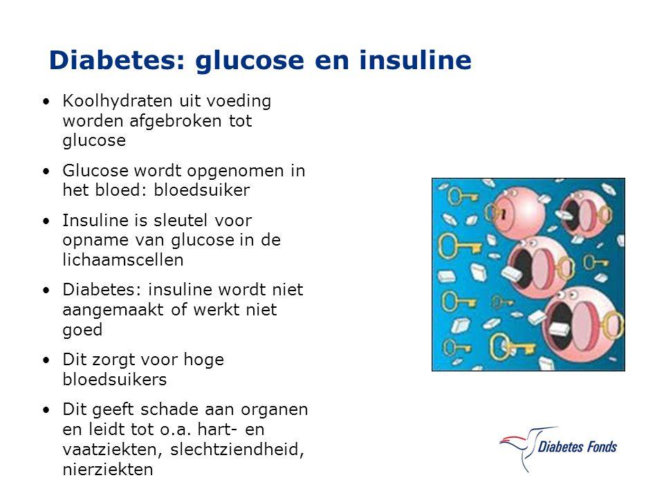 Diabetes: glucose en insuline