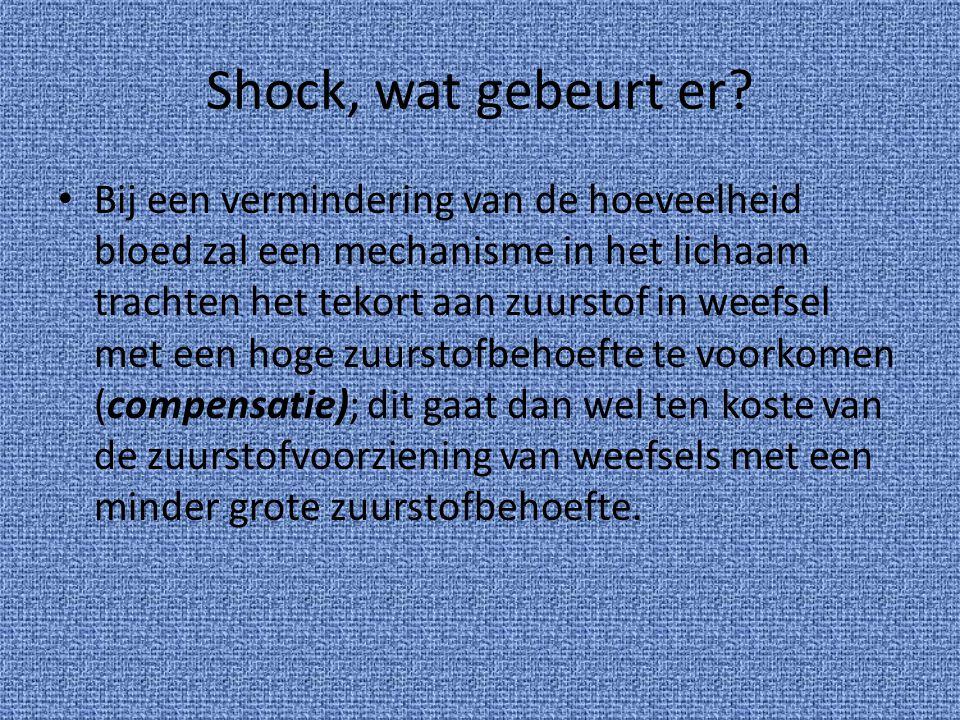 Shock, wat gebeurt er