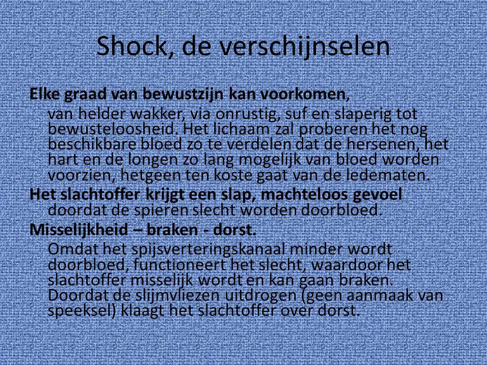 Shock, de verschijnselen