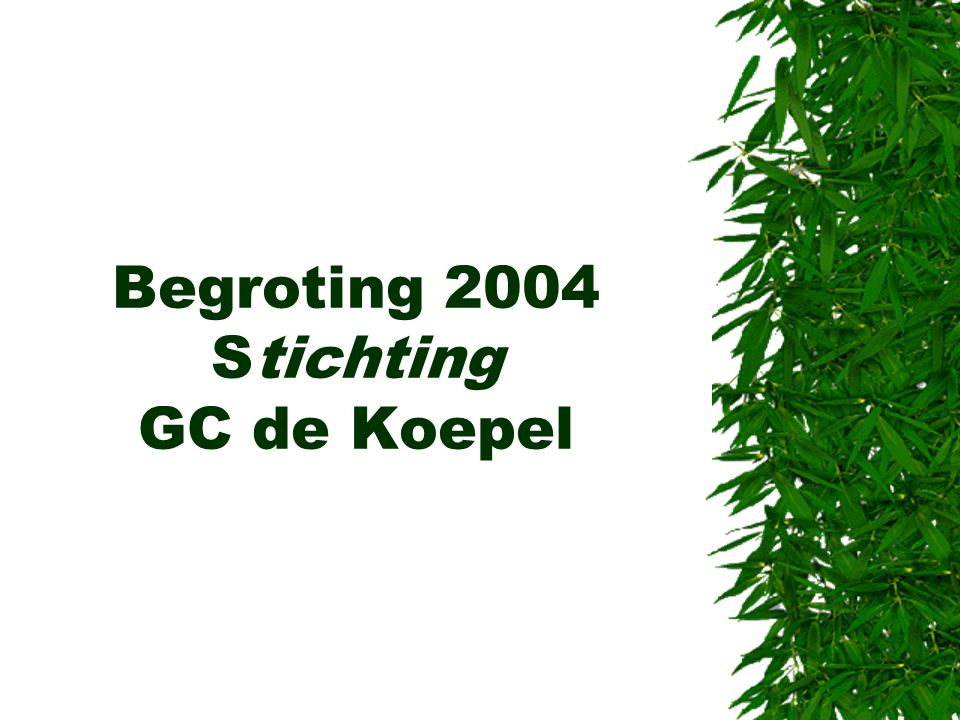 Begroting 2004 Stichting GC de Koepel