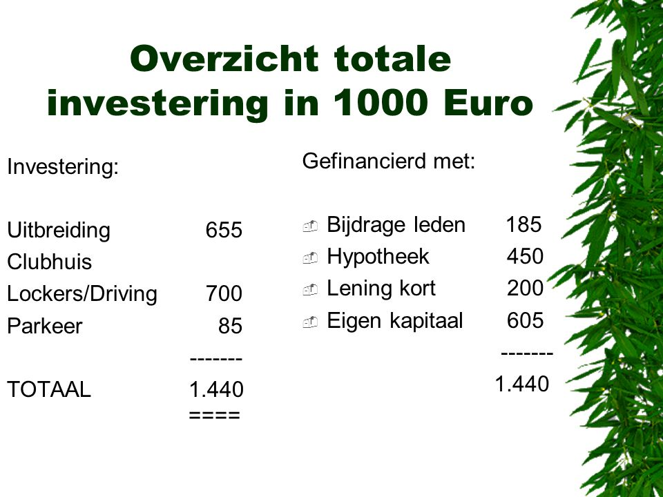 Overzicht totale investering in 1000 Euro