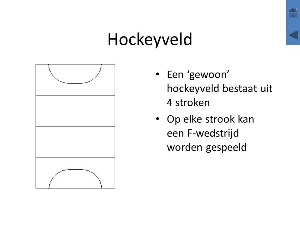 Hockeyveld Een 'gewoon' hockeyveld bestaat uit 4 stroken