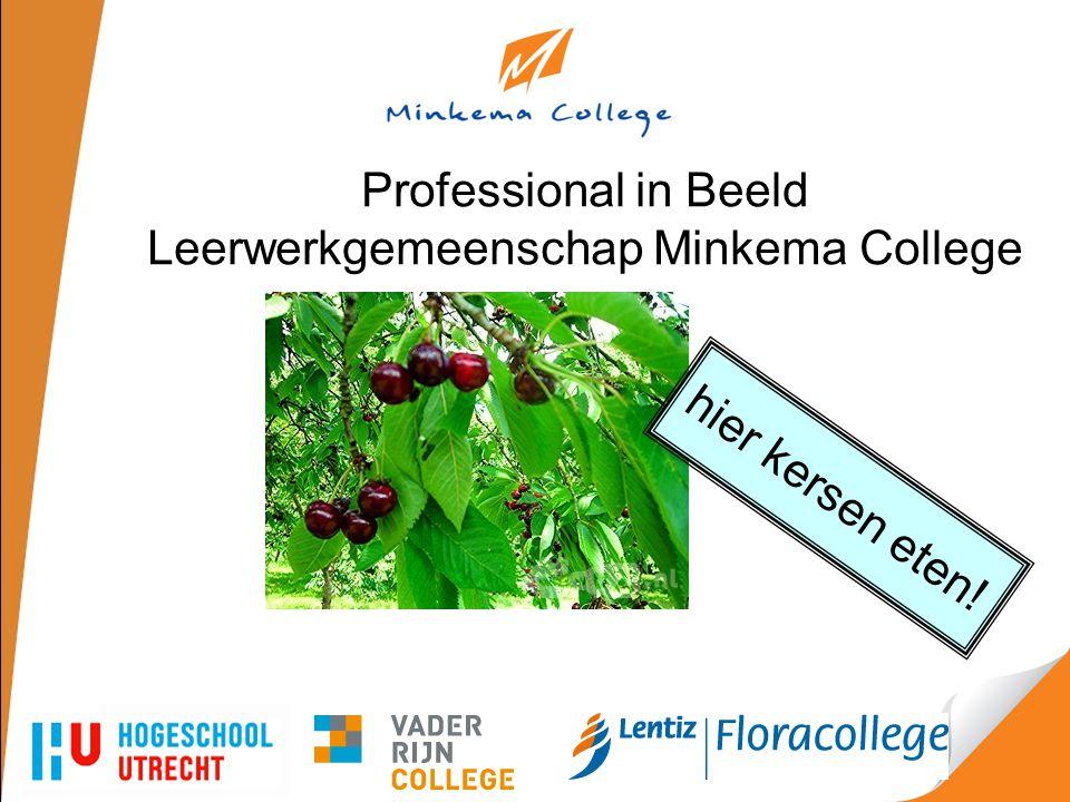 Professional in Beeld Leerwerkgemeenschap Minkema College