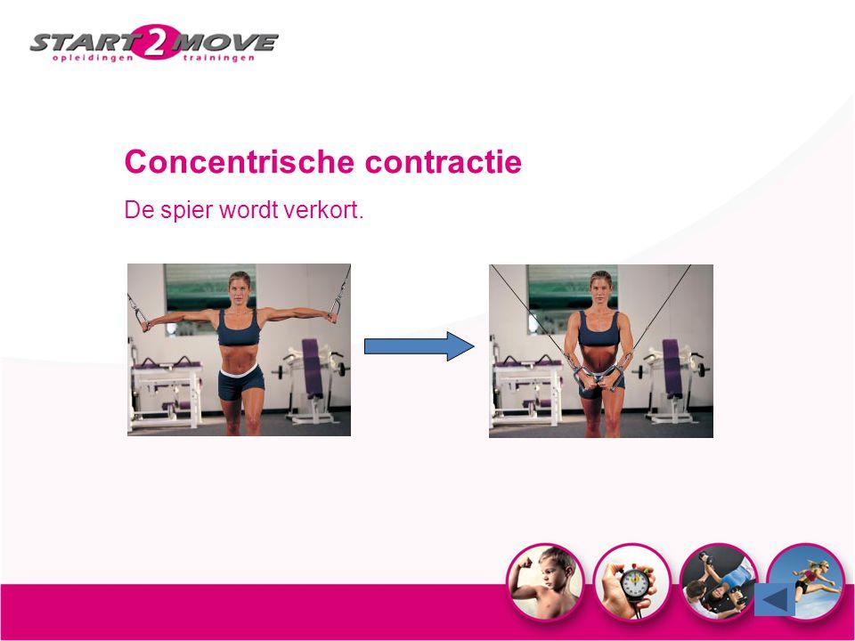 Concentrische contractie