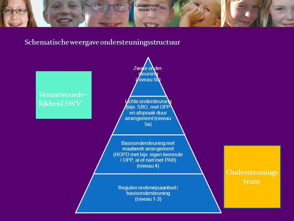 Schematische weergave ondersteuningsstructuur
