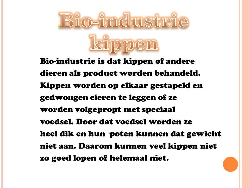 Bio-industrie kippen