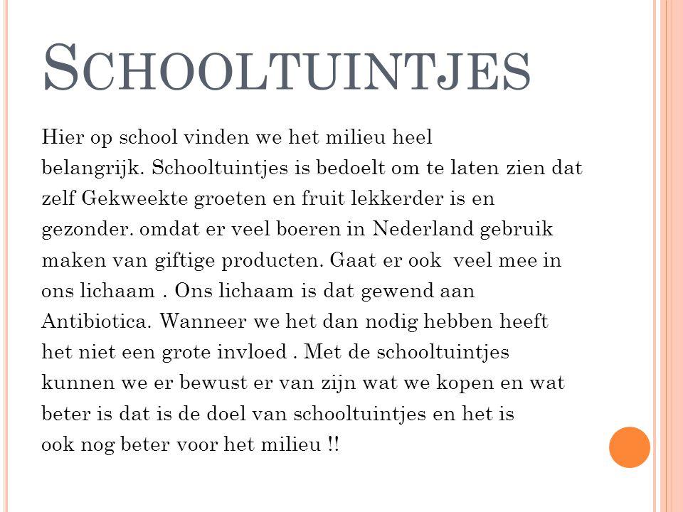 Schooltuintjes