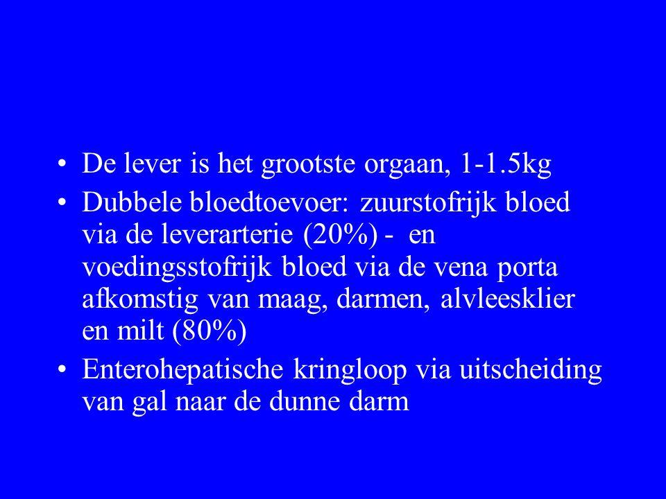 De lever is het grootste orgaan, 1-1.5kg