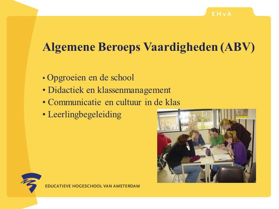 Algemene Beroeps Vaardigheden (ABV)