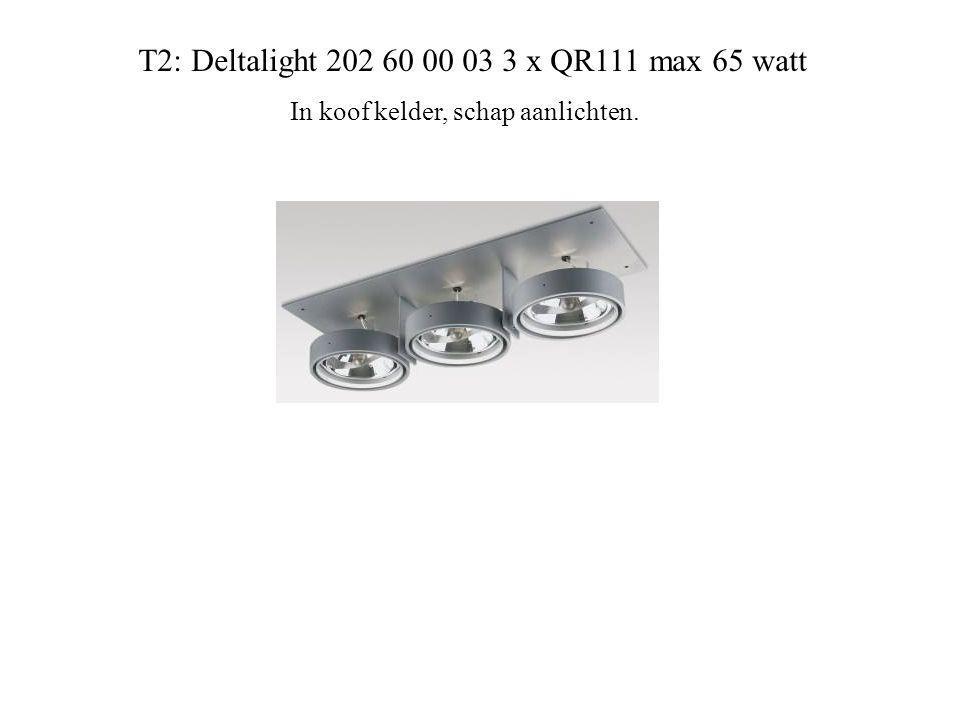 T2: Deltalight 202 60 00 03 3 x QR111 max 65 watt