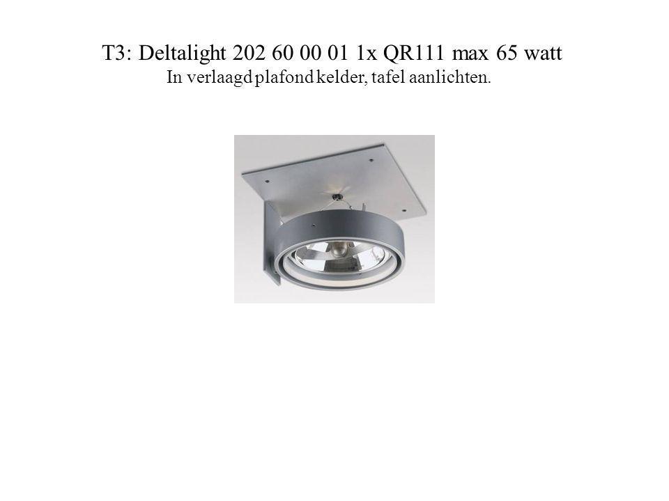 T3: Deltalight 202 60 00 01 1x QR111 max 65 watt