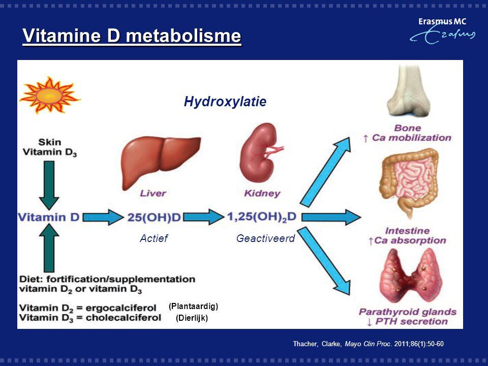 Vitamine D metabolisme