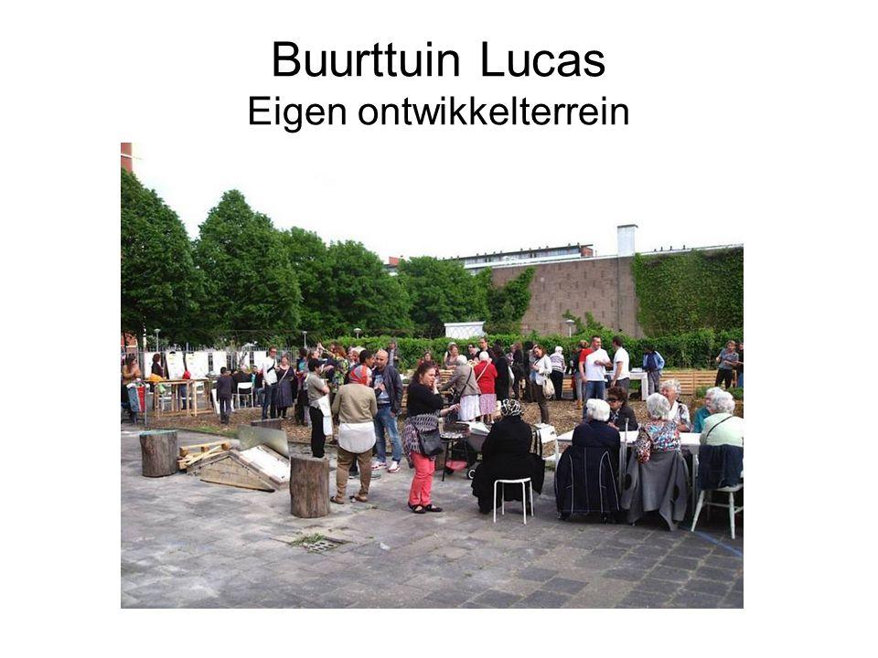 Buurttuin Lucas Eigen ontwikkelterrein