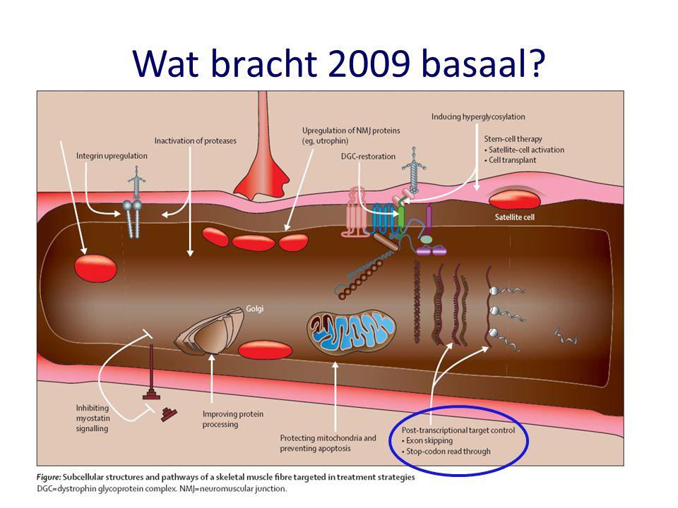 Wat bracht 2009 basaal Moleculaire geneeskunde begint te komen bij spierziekten