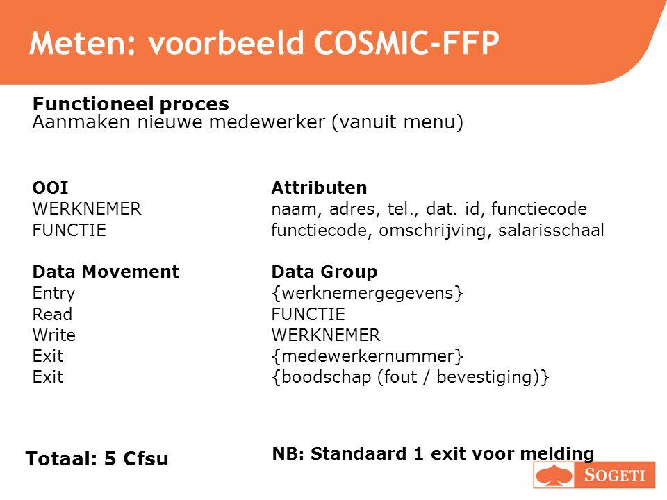 Meten: voorbeeld COSMIC-FFP