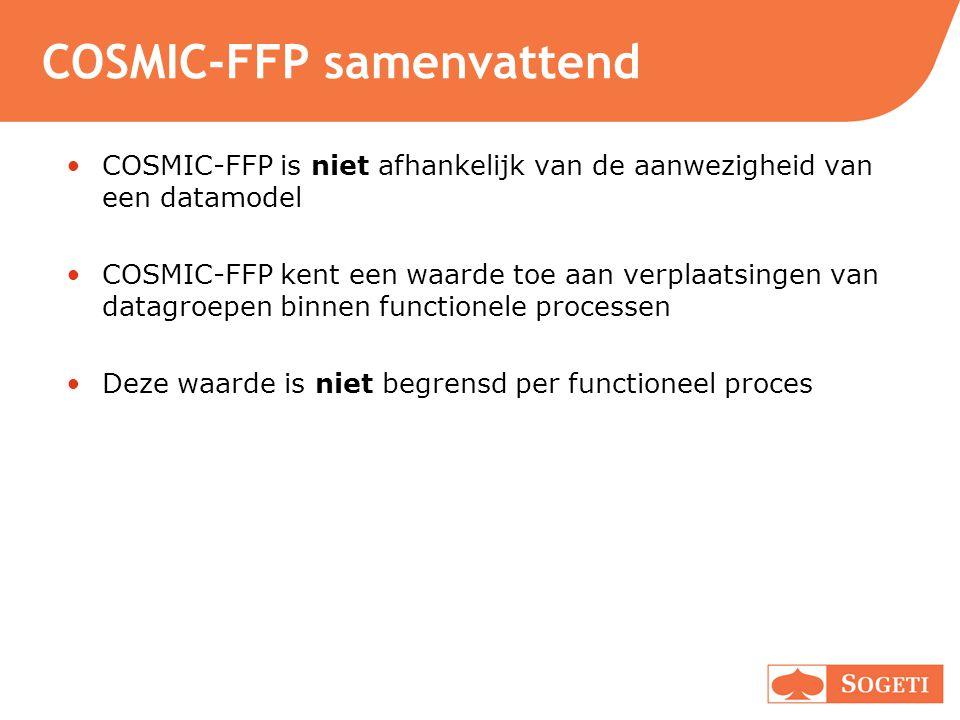 COSMIC-FFP samenvattend