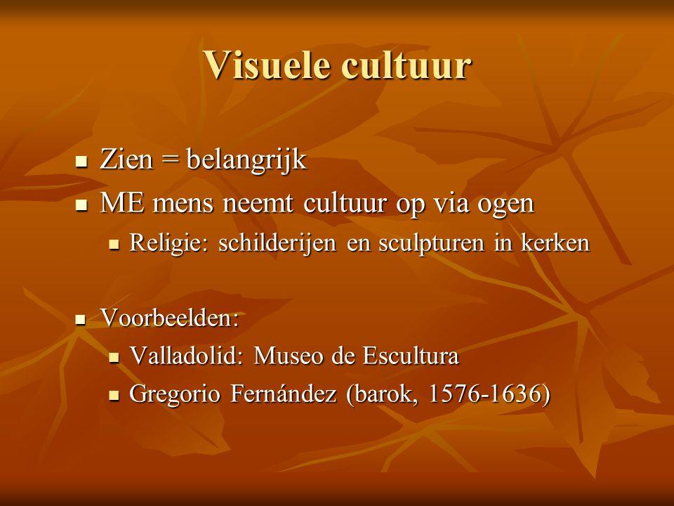 Visuele cultuur Zien = belangrijk ME mens neemt cultuur op via ogen