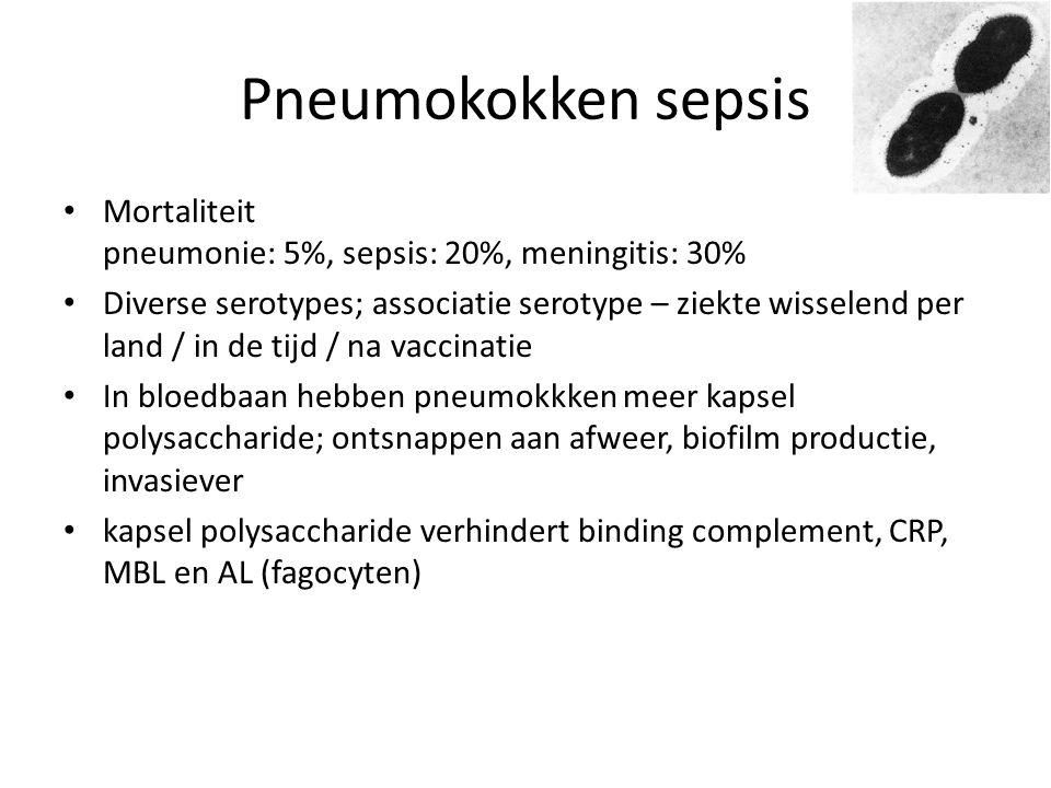 Pneumokokken sepsis Mortaliteit pneumonie: 5%, sepsis: 20%, meningitis: 30%