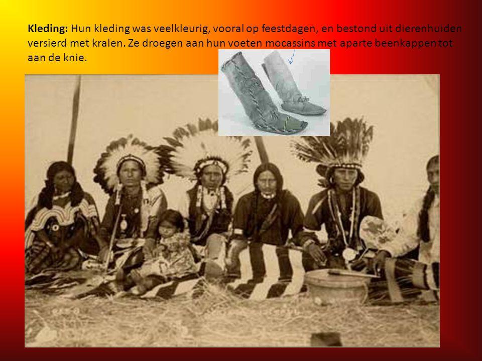 Kleding: Hun kleding was veelkleurig, vooral op feestdagen, en bestond uit dierenhuiden versierd met kralen.