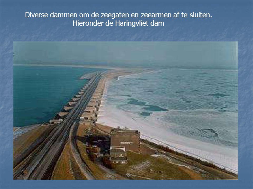 Diverse dammen om de zeegaten en zeearmen af te sluiten.