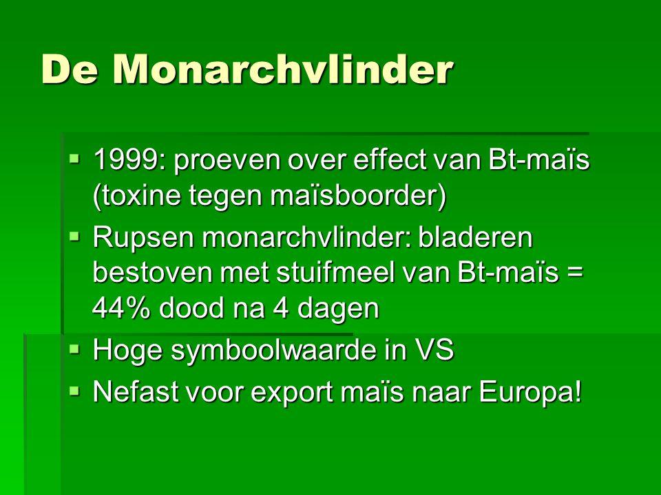 De Monarchvlinder 1999: proeven over effect van Bt-maïs (toxine tegen maïsboorder)