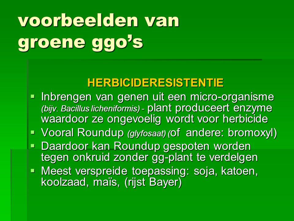 voorbeelden van groene ggo's