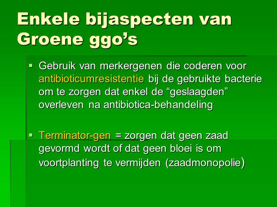 Enkele bijaspecten van Groene ggo's