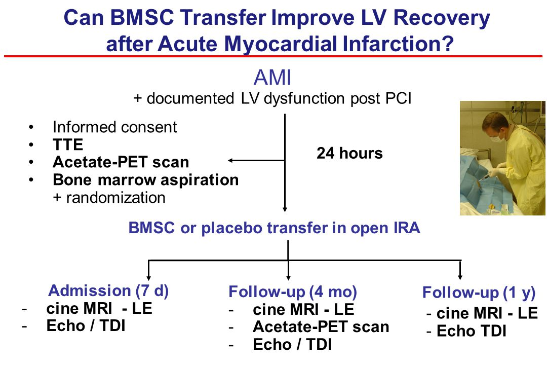 Can BMSC Transfer Improve LV Recovery