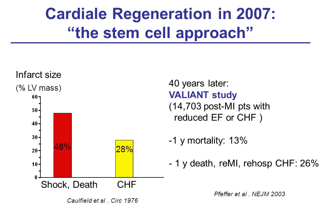 Cardiale Regeneration in 2007: the stem cell approach