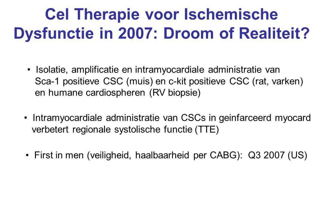 Cel Therapie voor Ischemische Dysfunctie in 2007: Droom of Realiteit