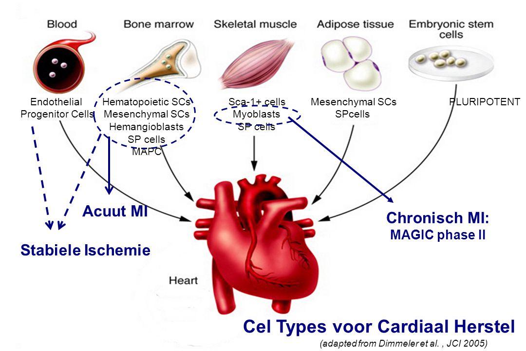 Cel Types voor Cardiaal Herstel