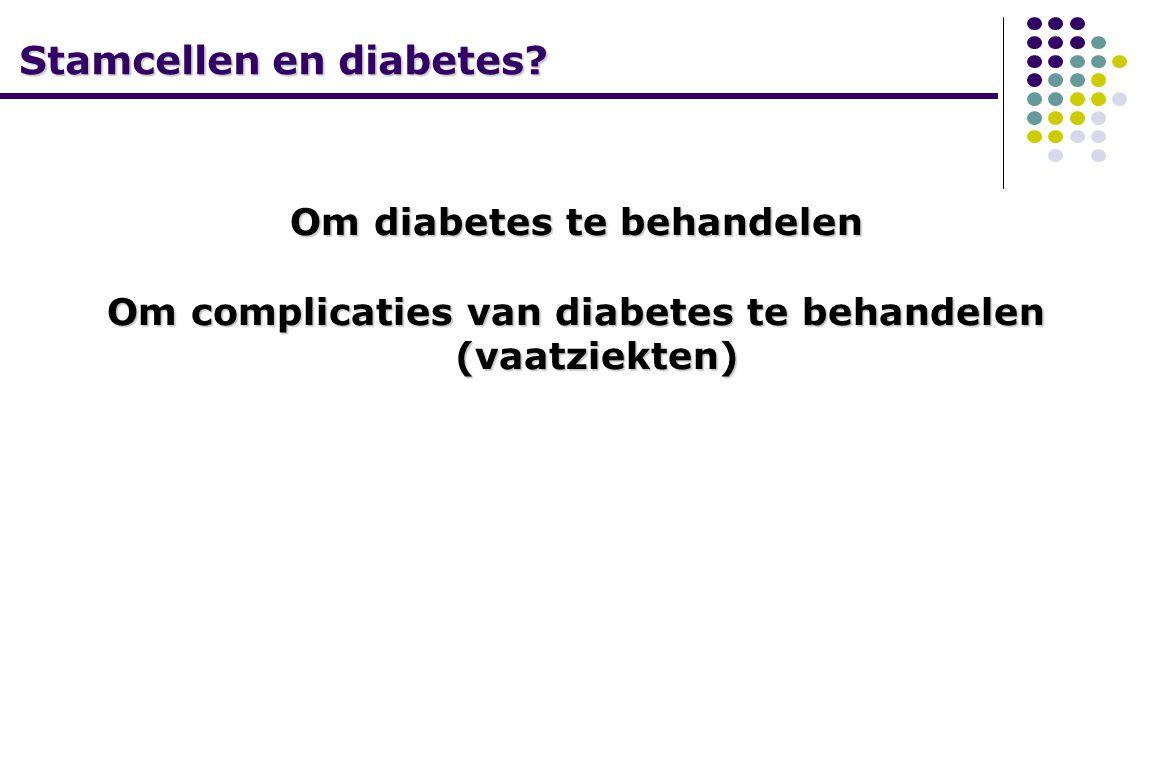 Stamcellen en diabetes