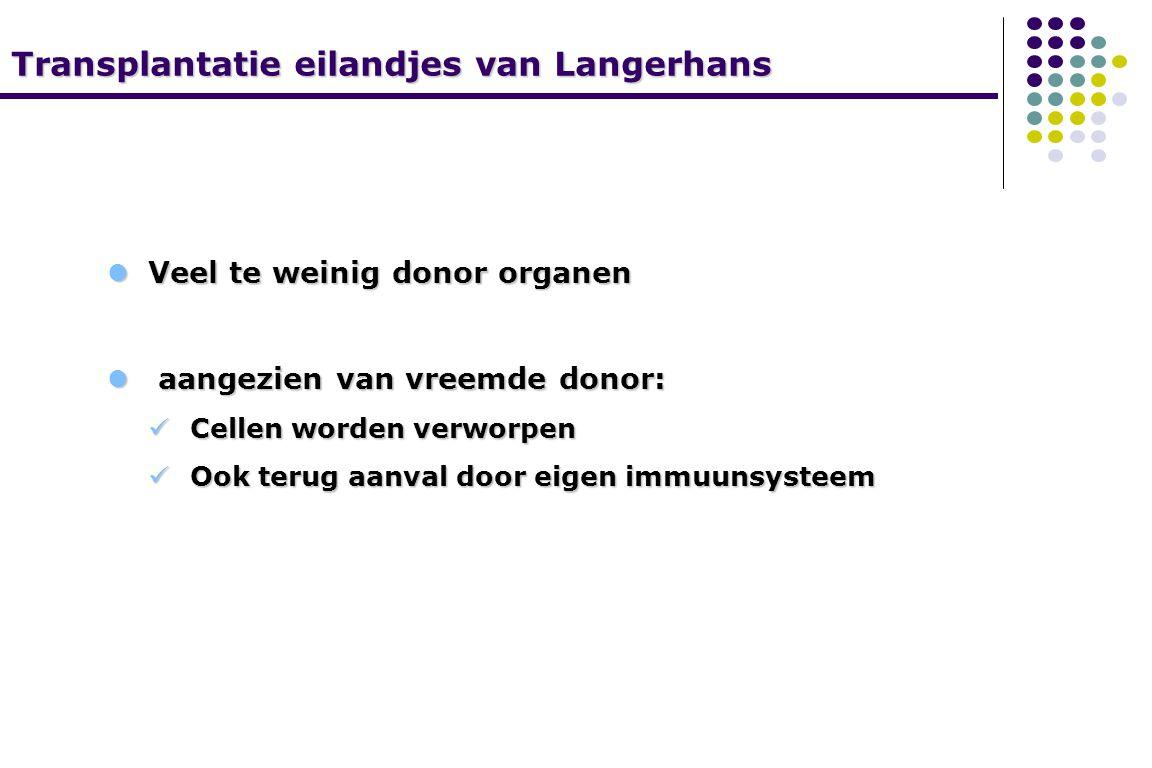 Transplantatie eilandjes van Langerhans