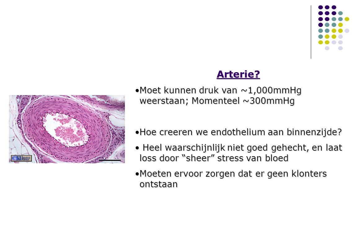 Arterie Moet kunnen druk van ~1,000mmHg weerstaan; Momenteel ~300mmHg
