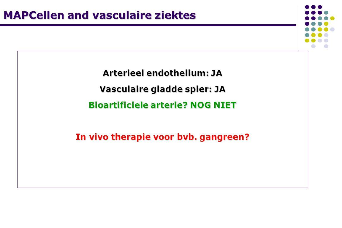 MAPCellen and vasculaire ziektes