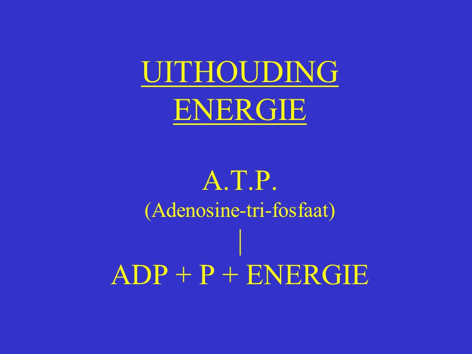 UITHOUDING ENERGIE A.T.P. (Adenosine-tri-fosfaat) | ADP + P + ENERGIE