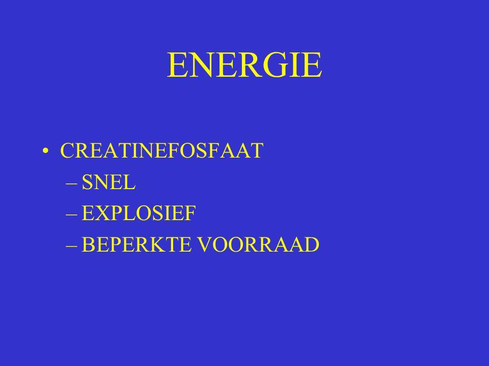 ENERGIE CREATINEFOSFAAT SNEL EXPLOSIEF BEPERKTE VOORRAAD