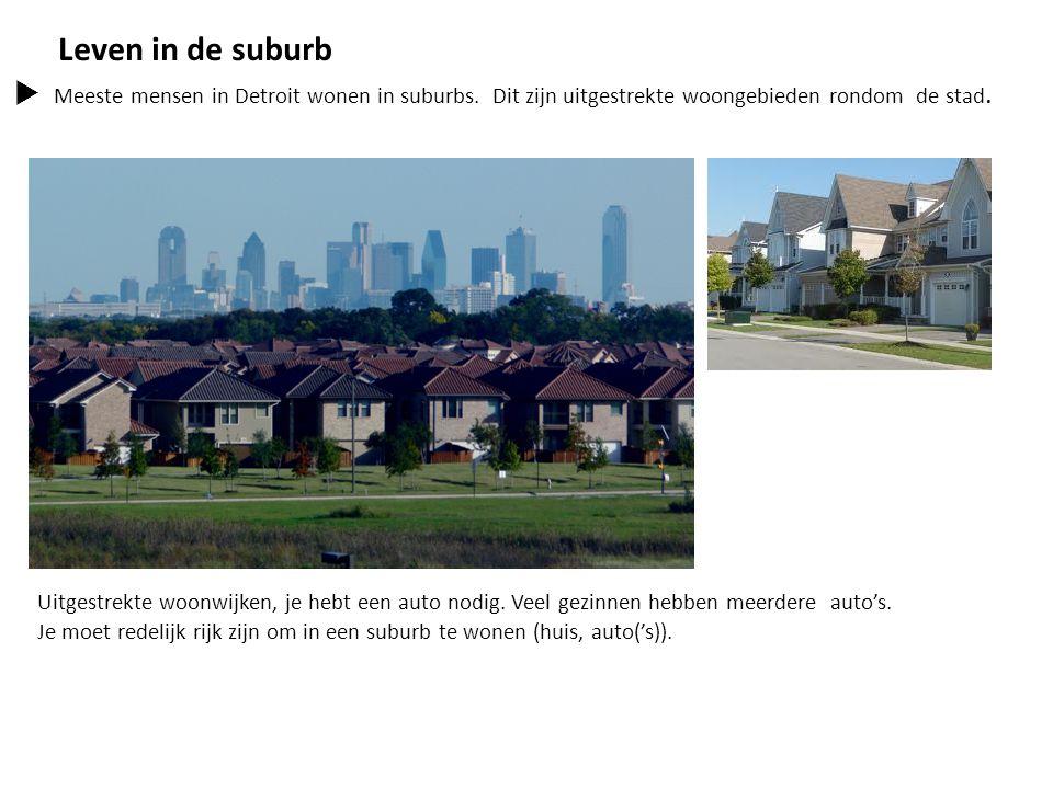 Leven in de suburb Meeste mensen in Detroit wonen in suburbs. Dit zijn uitgestrekte woongebieden rondom de stad.
