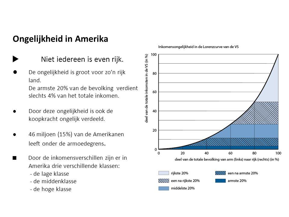 Ongelijkheid in Amerika