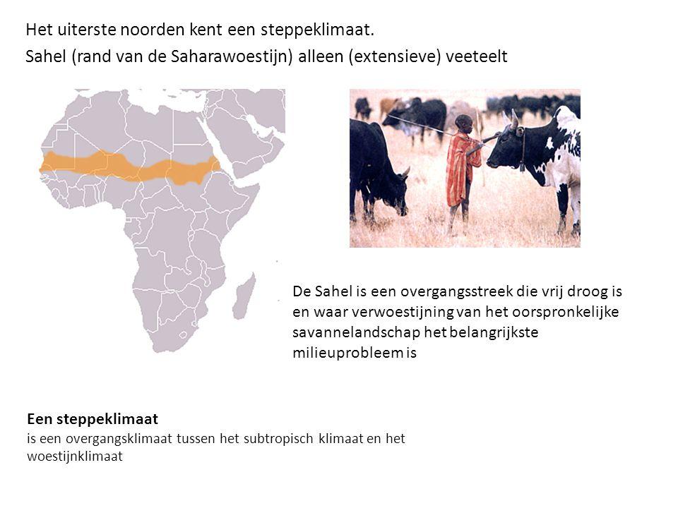 Het uiterste noorden kent een steppeklimaat