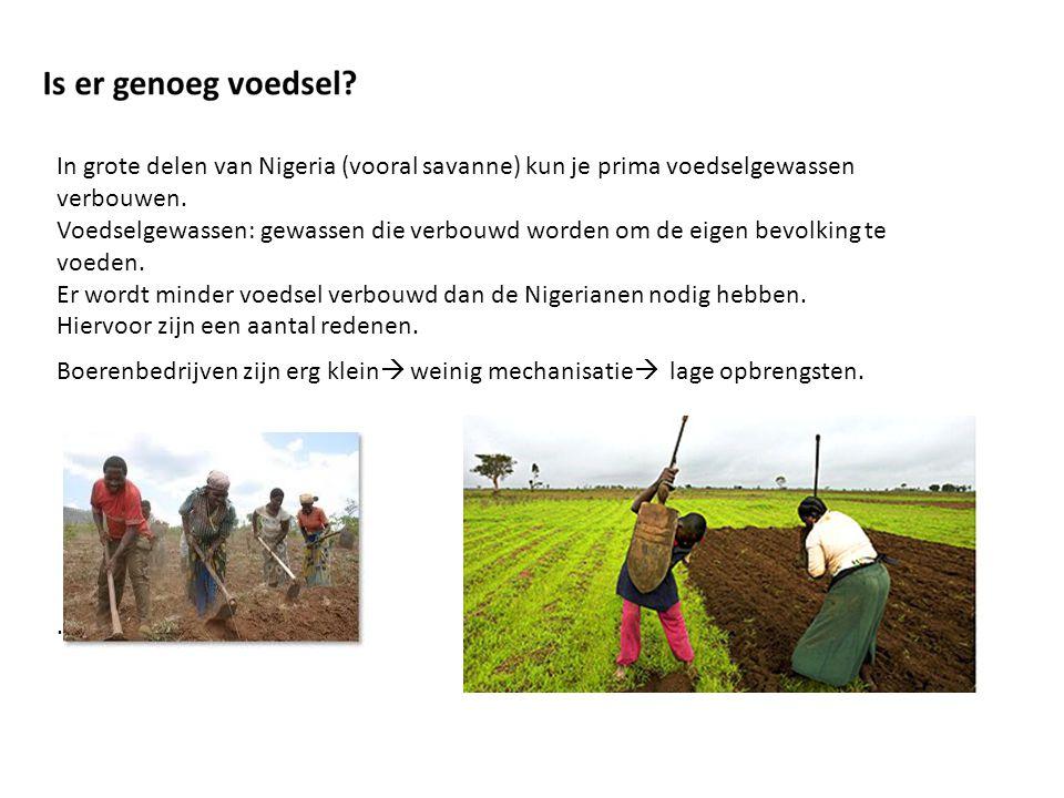 In grote delen van Nigeria (vooral savanne) kun je prima voedselgewassen verbouwen.