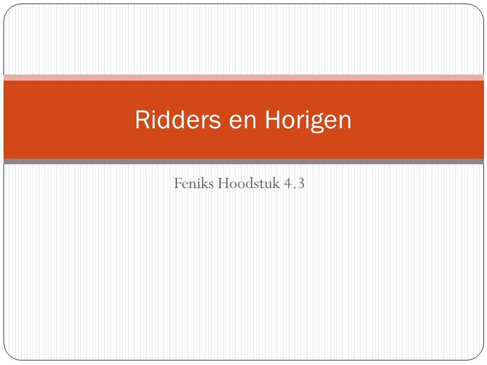 Ridders en Horigen Feniks Hoodstuk 4.3