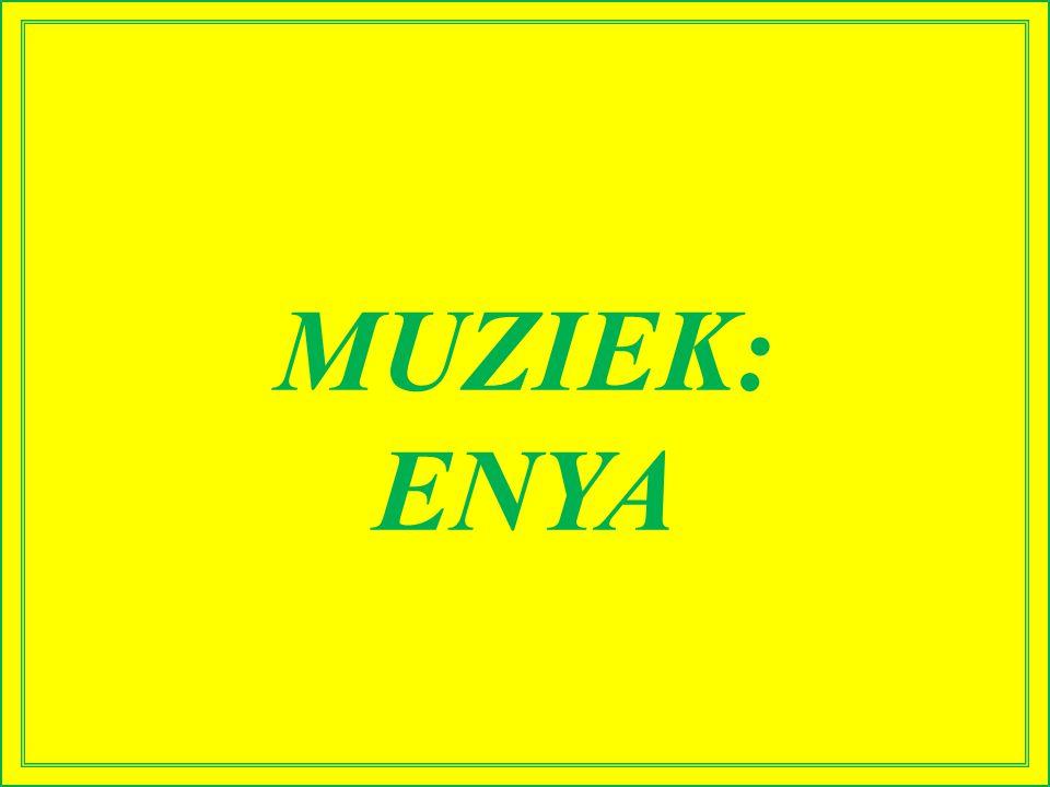 MUZIEK: ENYA