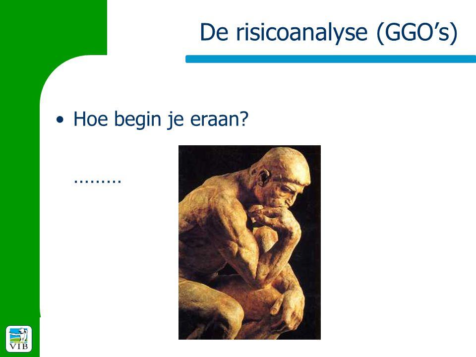 De risicoanalyse (GGO's)