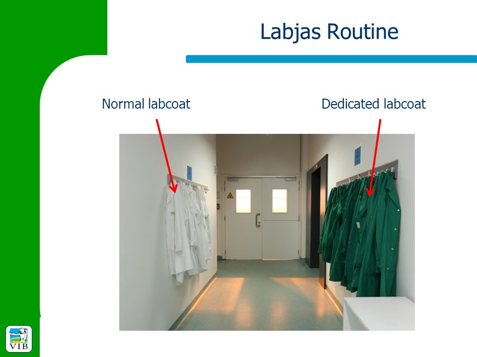 Labjas Routine Normal labcoat Dedicated labcoat