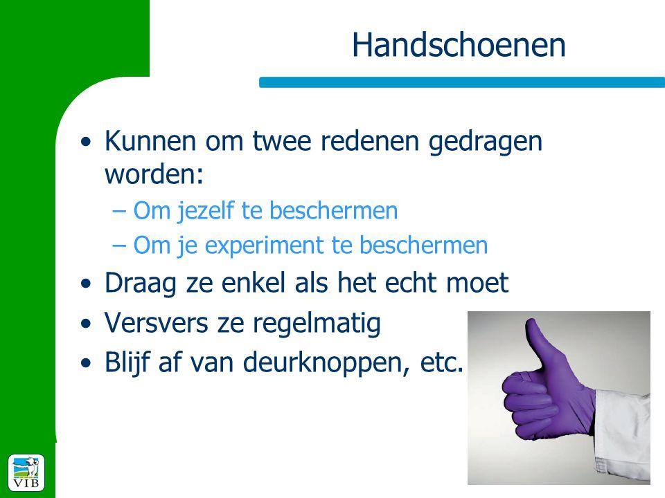 Handschoenen Kunnen om twee redenen gedragen worden: