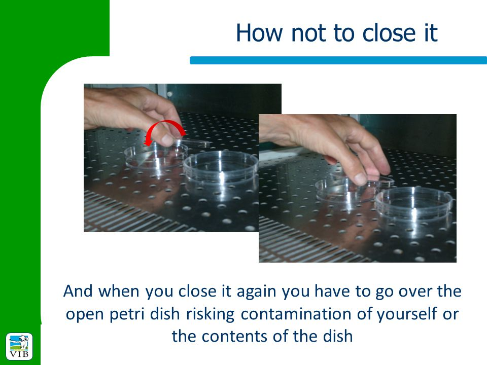 How not to close it And when you close it again you have to go over the open petri dish risking contamination of yourself or the contents of the dish.