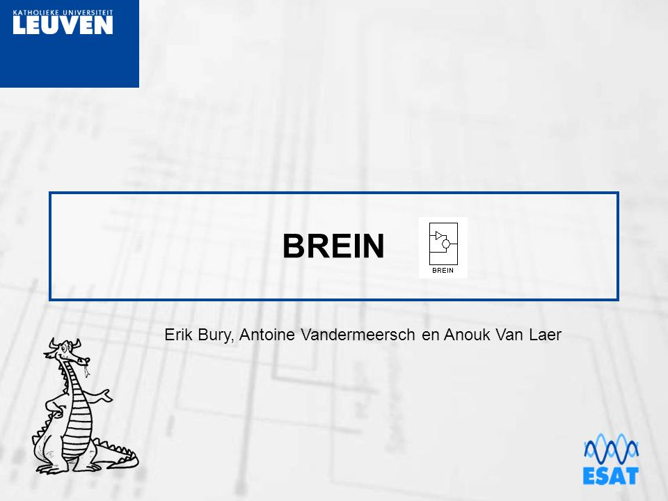 BREIN Erik Bury, Antoine Vandermeersch en Anouk Van Laer