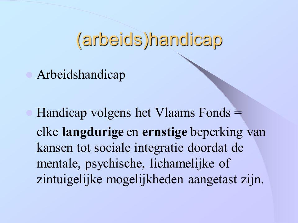 (arbeids)handicap Arbeidshandicap Handicap volgens het Vlaams Fonds =