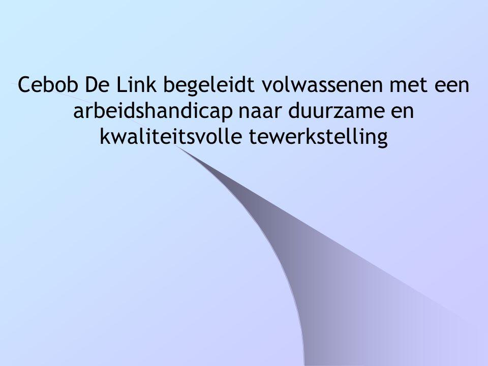 Cebob De Link begeleidt volwassenen met een arbeidshandicap naar duurzame en kwaliteitsvolle tewerkstelling